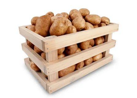 Самые длительные по времени способы, как хранить картофель в квартире и в погребе