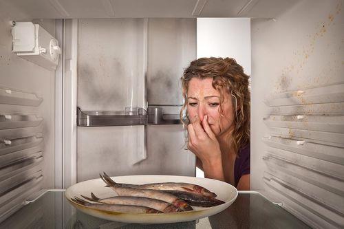 Проверенные методы, чтобы устранить рыбный запах в квартире