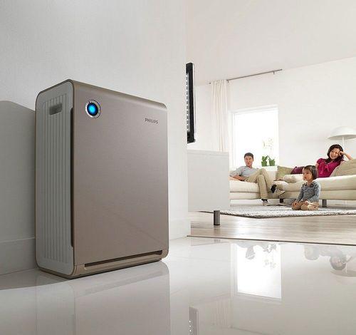 Самые эффективные способы очистить воздух в квартире
