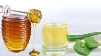 Заготовка сока и листьев алоэ: как хранить лекарственное растение?