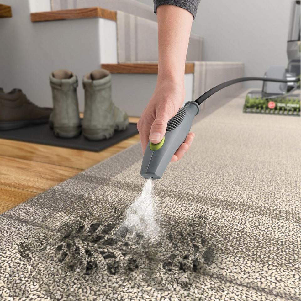 Химчистка ковров самостоятельно
