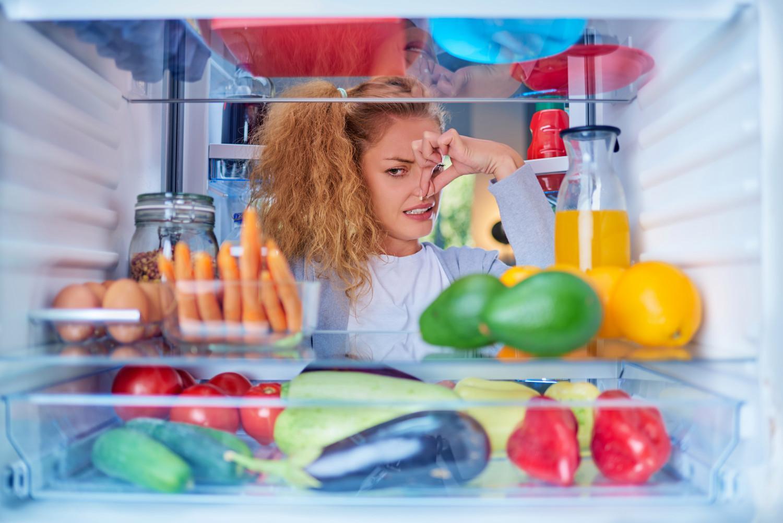 Запах в холодильнике, его причины и устранение
