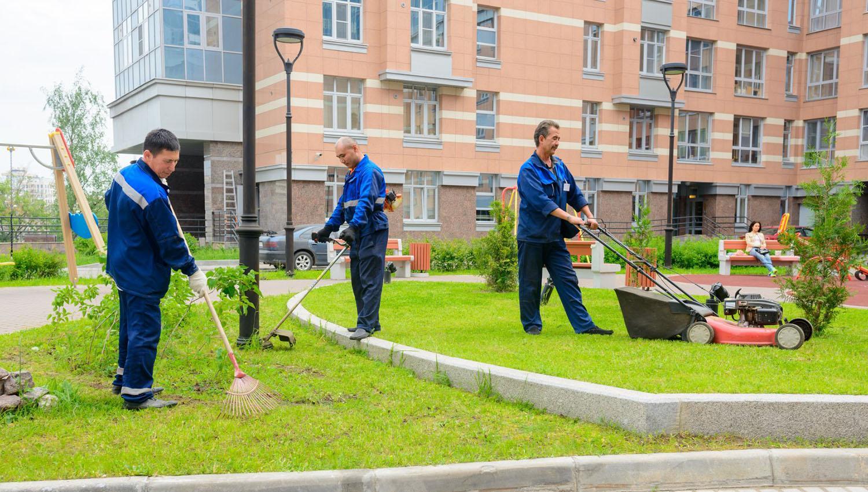 Договор оказания услуг по уборке территории
