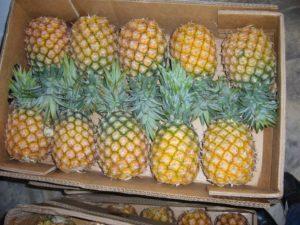 Недозрелый ананас